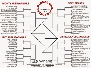 MMMBracket2015_final_BINOMIALS