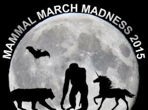 Screen Shot 2015-02-16 at 11.45.55 AM